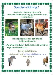 Eolshälls 4H gård ridning 2015